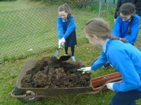 Eco Committee Hard at Work!